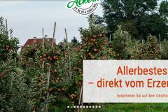 Screenshot_2020-12-24-Ulrich-Harms6